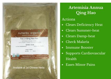 artemisia annua, qing hao, traditional bulk herbs, bulk tea, bulk herbs, teas, medicinal bulk herbs, powder herbs