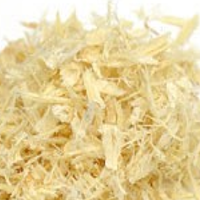 astragalus-200-size.png