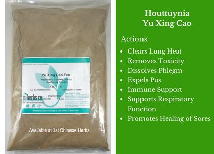 houttuynia, yu xing cao, fishy smelling herb, traditional bulk herbs, bulk tea, bulk herbs, teas, medicinal bulk herbs