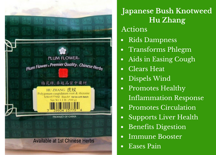 japanesebushyknotweed-huzhang-benefits-plumflower-preview.png
