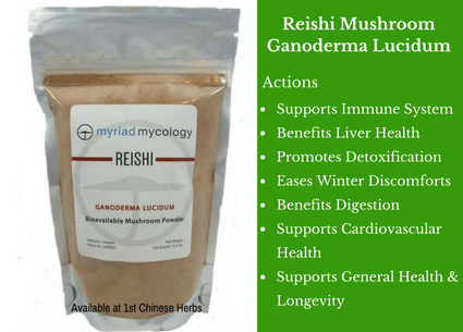 Reishi Mushroom, myriad mycology, reishi, red reishi, traditional bulk herbs, bulk tea, bulk herbs, teas, medicinal bulk herbs